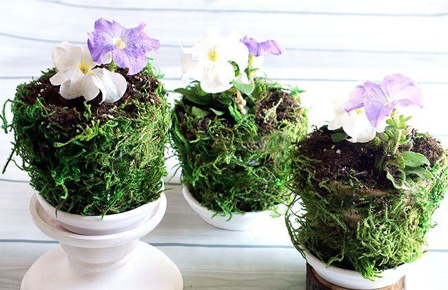 Fabric and Moss Covered Pots {Summer Gardening Series}