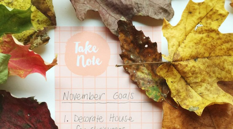 November Monthly Goals