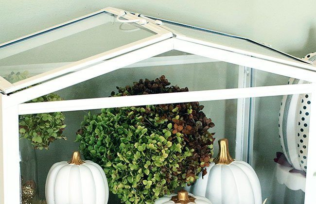 Washi Pumpkins and Terrarium Fun this Fall with Oriental Trading