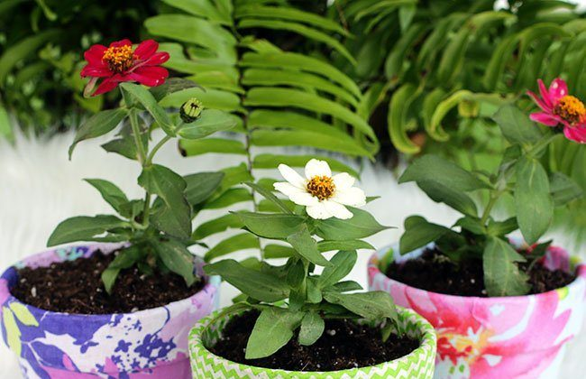 Monogrammed Fabric Pots {Summer Craftacular Blog Hop}